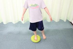 バランスディスクを使用した神経筋促通トレーニングを行なっている写真
