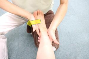 足関節周囲筋トレーニングで内反運動を行なっている写真