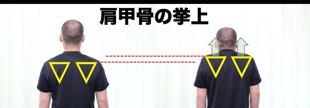 肩甲骨の挙上を示す写真画像
